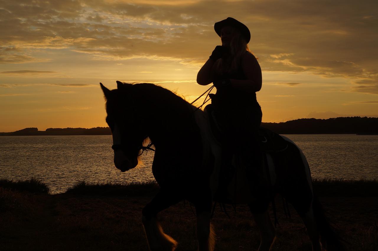 Silhouette on a Saddle